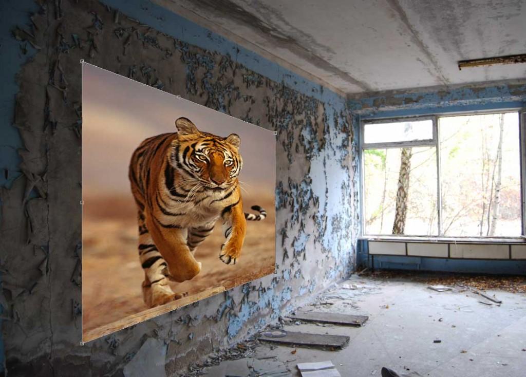 tijger_2