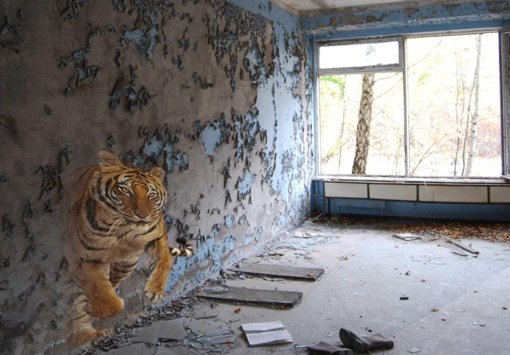 tijger_7